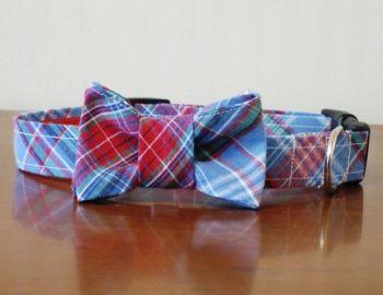 madras bow tie dog collar